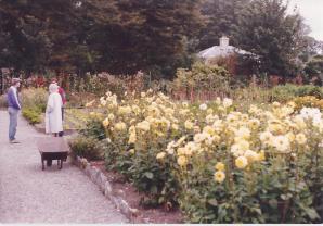 gardensauntmary