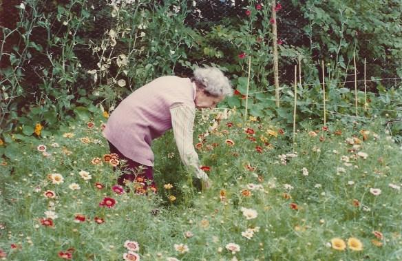 The garden w: